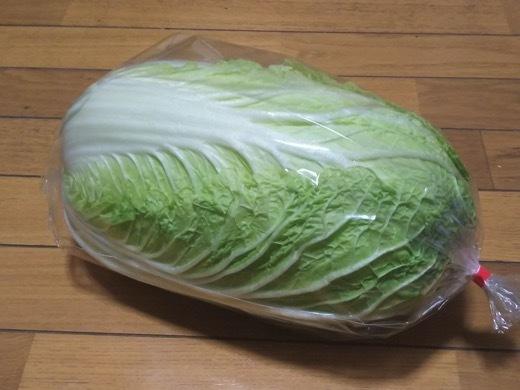 chinesecabbage-1.jpg