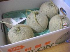 melon-1.jpg