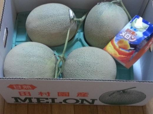 melon-11.jpg
