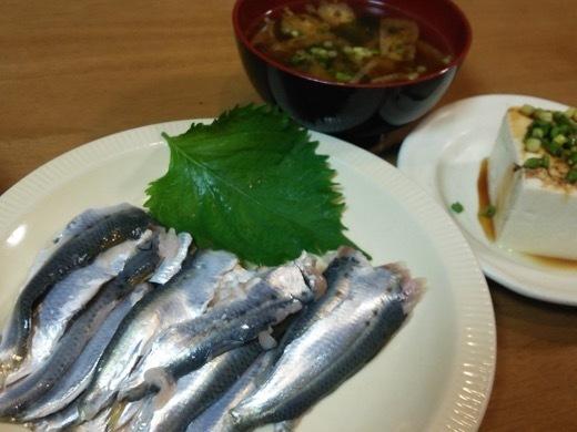 sardine-3.jpg