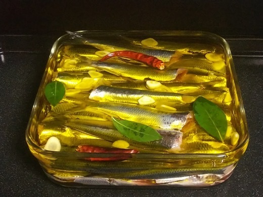 sardine-9.jpg