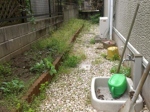 weeding-45.jpg